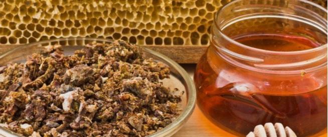 العكبر مع العسل